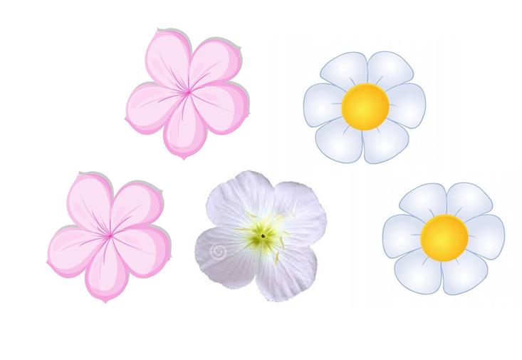 kwiaty_1a.png