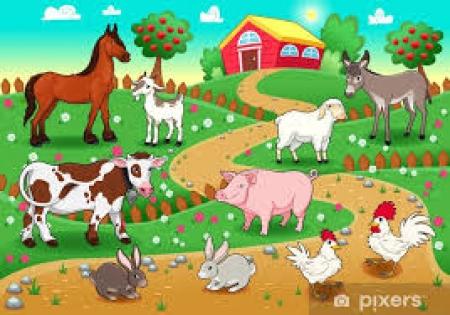 Przeliczamy zwierzęta w gospodarstwie wiejskim