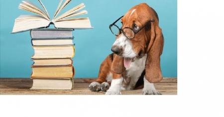Czytam z klasą ,, lekturki spod chmurki