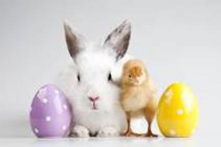 Symbole świąt Wielkanocnych. Wielkanoc w naszych domach- przysmaki