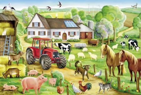 Dzień w gospodarstwie. Wiosna w polu.
