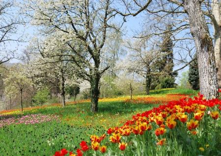 Wiosna zawitała do nas na dobre
